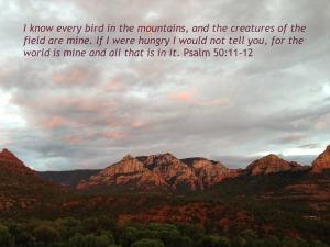 Psalm 50-11