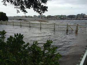 backyard flood