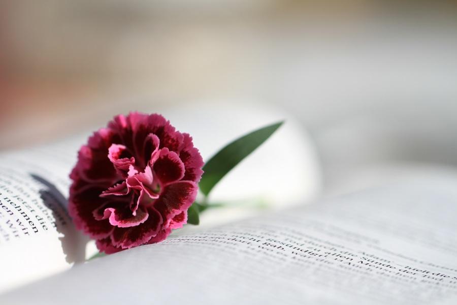 5 Strengthening Scriptures