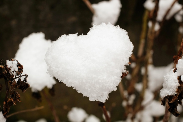 heart-1145528