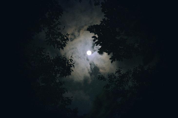 moon-1180345_1920
